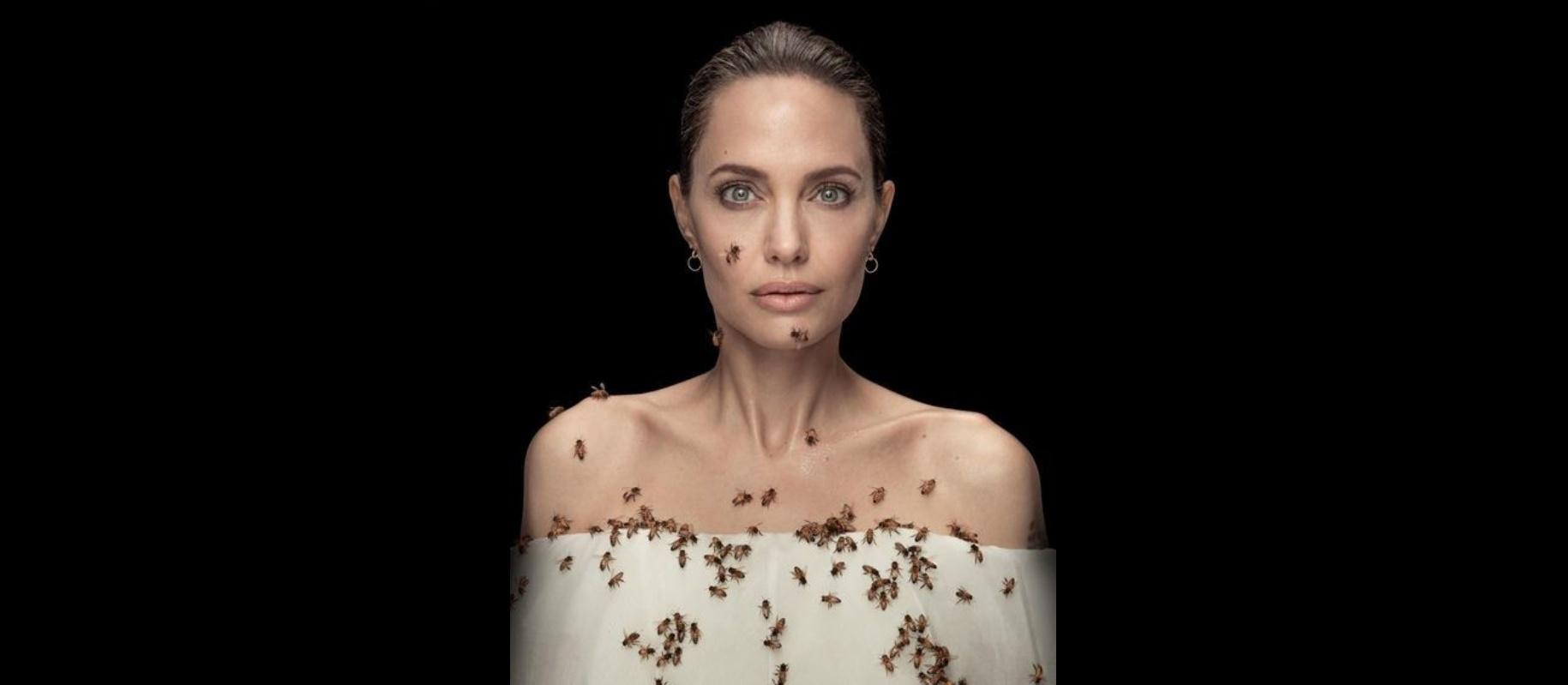 Анджеліна Джолі у відеоролику National Geographic до Всесвітнього дня бджіл